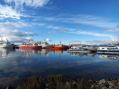 Ushuaia, Argentina (Dan Cosmin) Tags: blue sun ice water penguins kayak outdoor antarctica seal kayaking whale iceberg