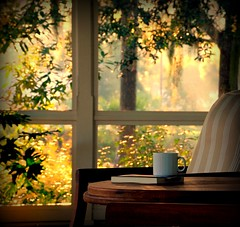 oh what a beautiful morning (pam ullman) Tags: morning mist coffee birds sunrise perfect spanishmoss breeze liveoaks southernlight mayriver palmettobluffsc picnikvignette anagramsbylorriemoore