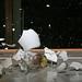 """<a href=""""http://www.flickr.com/photos/40467171@N00/1812013437/"""" mce_href=""""http://www.flickr.com/photos/40467171@N00/1812013437/"""" target=""""_blank"""">laszlo-photo</a> via Flickr"""
