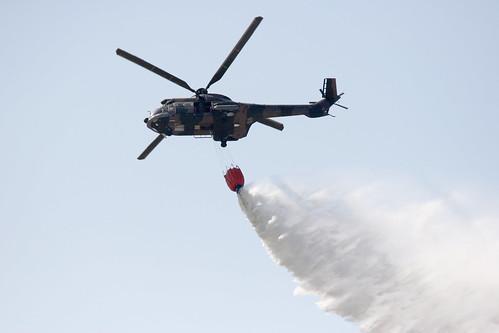 Oryx Water Bomb