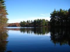 My old backyard (Leya :P) Tags: blue trees sky lake reflection green water landscape mirror goldenglobe ashlandma platinumphoto diamondclassphotographer flickrdiamond platinumheartaward theperfectphotographer �natureselegantshot�