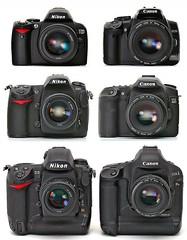 Nikons vs. Canons
