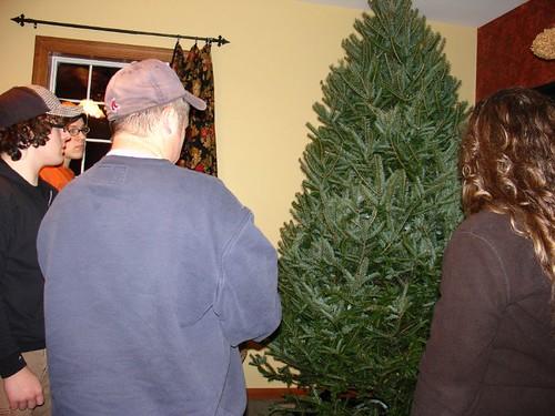 Christmas tree is finally home