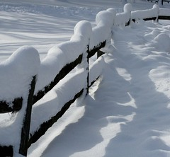 On the Fence (Kathy~) Tags: winter snow river big michigan mother huronriver cw dexter momma bigmomma hudsonmills aplusphoto photofaceoffwinner pfogold fotocompetition fotocompetitionbronze fotocompetitionsilver challengew herowinner