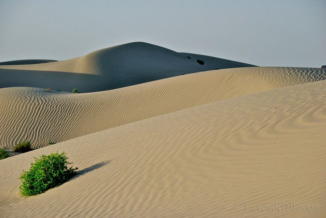 The Taklamakan Desert