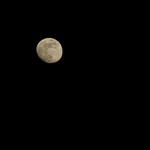 My Moon, my Man