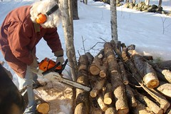 Firewood for the evaporator