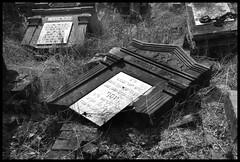 Broken Memories (Jan Ronald Crans) Tags: bw broken cemetery grave graveyard cemetary poland polska polen gravestone jewish lodz d alarecherchedutempperdu