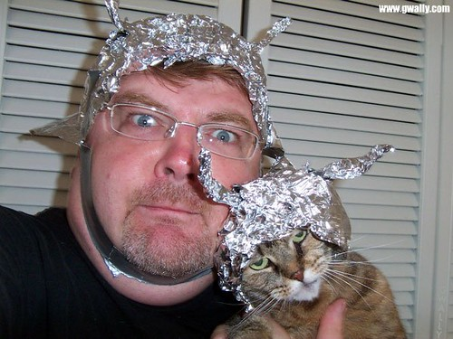 The Cat and the Tin Foil Hat