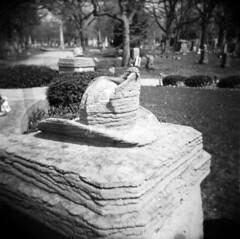 Helmet (Comtesse DeSpair) Tags: chicago 120 cemetery analog holga diafine rosehillcemetery holga120n ilfordhp5400