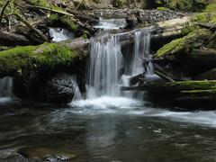 SmallLindseyWaterFall (pauljess999) Tags: hiking wyeth columbiarivergorge lindseycreek