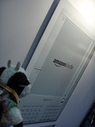 Wow, that's the biggest Amazon Kindle I've ever seen