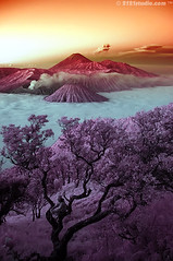 Mount Bromo, Batok & Semeru (Infrared) (2121studio) Tags: travel mountain nature indonesia ir nikon d70s ali journey solo malaysia infrared indah kuantan surabaya alam erupting mountbromo mountsemeru centraljava eastjava gunungbromo jateng gunungsemeru jatim convertedinfraredcamera 2121studio oranggunung kuantanphotographer pahangphotographer luarbiasa pergunungan goldenvisions ciptaanallahswt malaysianinfraredphotographer smokingmountbromo photographerdreamspot gunungbromomahumeletup
