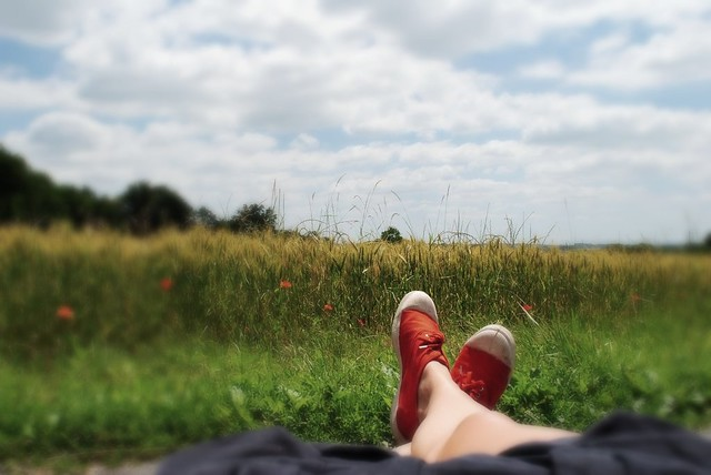 lounging in the poppy field