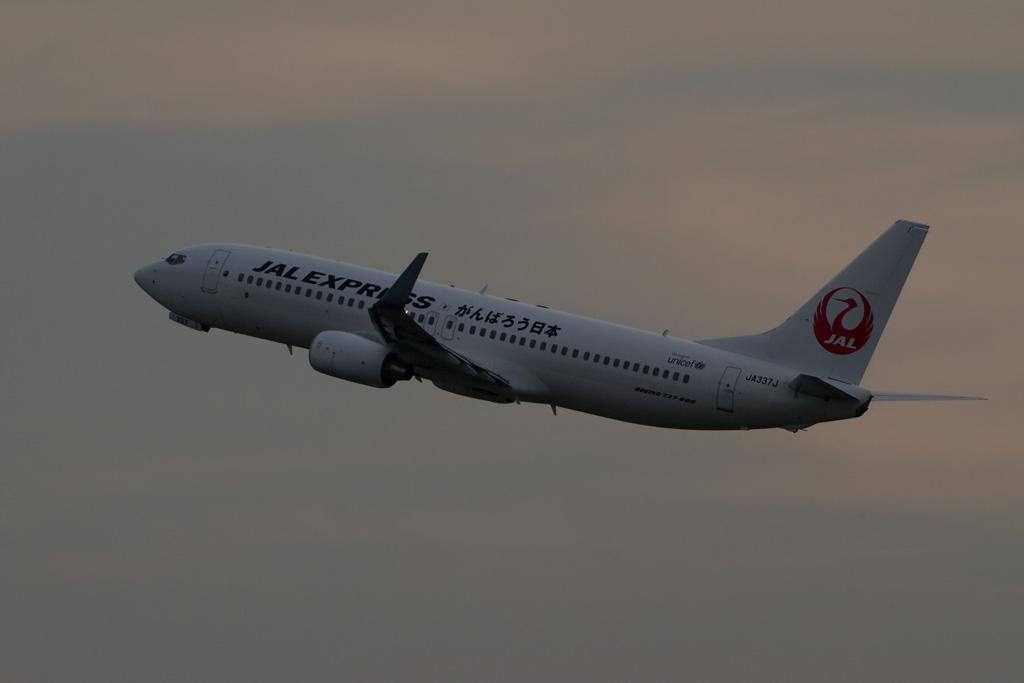 "JAL's ""Ganbarou Nippon"" Jet at dusk"