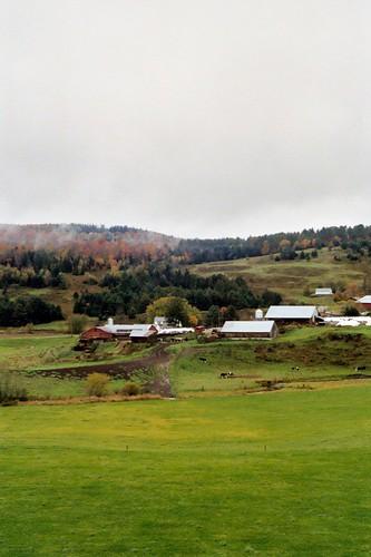 Vermont Dairy Farm 2