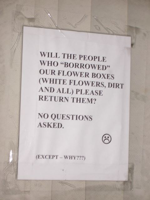"Will the people who ""borrowed"" our flower boxes (white flowers, dirt and all) please return them? No questions asked. :(  (Except - WHY???)"