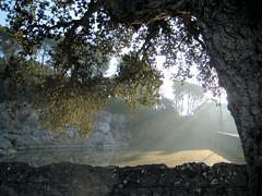 Caldes - Bassa (Carquinyol) Tags: catalunya pasoscatalans caldesdemalavella principatdecatalunya