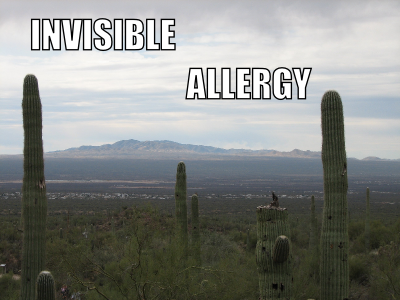 Invisible Allergy