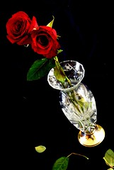 Glass 'n Roses  /  Vidrio Y Rosas (pasotraspaso. Jesus Solana Fine Art Photography) Tags: red roses glass rose photography spain nikon europe photos rosa rosas cristal rojas florero d80 nikond80 pasotraspaso jesussolana