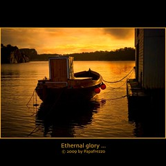 Eternal glory... (Papafrezzo, 2007-2015 by www.papafrezzo.com) Tags: old winter light sun white fish cold water yellow norway landscape geotagged boats gold boat norge fishing nikon warm europe raw nef gloomy grim illumination quay nostalgia forgotten transportation 40mm bergen scandinavia eternity desolate lux deserted hordaland dilapidated patience noreg historicbuildings themoulinrouge bgs ygarden sjark nikkor1870dx 10faves buoyant oen d80 flickrsbest rawshots ownfav cy2 challengeyouwinner abigfave cywinner ownfavs aplusphoto diamondclassphotographer kystmuseet platinumheartaward thegardenofzen nefshots alemdagqualityonlyclub poseidonsdance nikonafszoomnikkor1870mmf3545dx papafrezzo