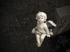 A different angel (gothicburg) Tags: cemetery grave angel sweden lightroom skogskyrkogården nikond80