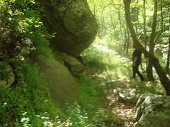 Big rock (sotoz) Tags: water falls kozani kataraktes velvento metoxi aliakmonas belbento