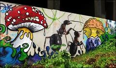 Fourmis et champignons - Explore 16/02/2017 (bleumarie) Tags: perpignan pyrénéesorientales mur streetart graffiti tagg artdelarue dessin couleur lettre écriture vert verdure façade champignon peinture décoration suddelafrance roussillon bleumarie mariebousquet ornemental herbe explore