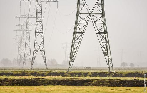 Foggy pylons line