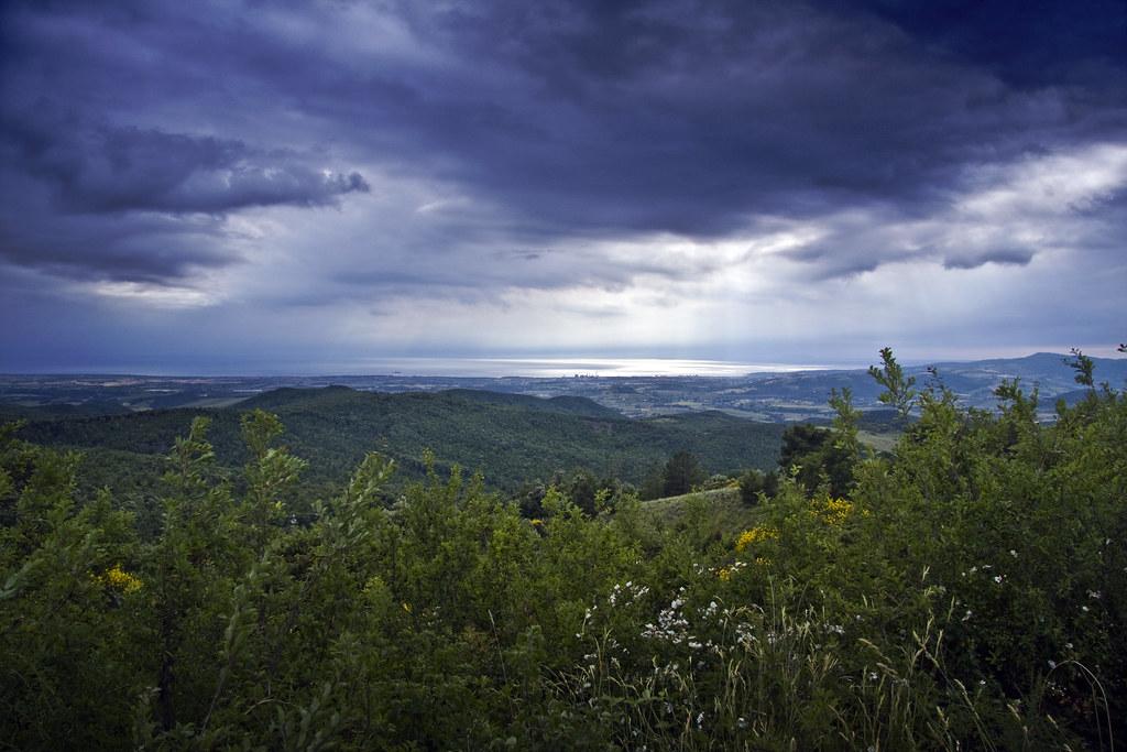 Rosignano Landscape