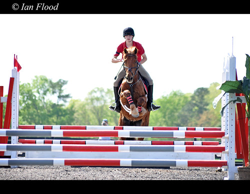 Matthew_showjumping