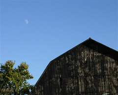 (mightyquinninwky) Tags: wood old autumn moon tree fall barn rural october afternoon farm kentucky farmland worn daytime aged agriculture lunar tinroof westernkentucky changeofseasons ohiorivervalley farmingcommunity ohiorivercity hendersoncountykentucky zionkentucky