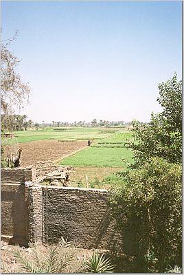 Suburbian Giza