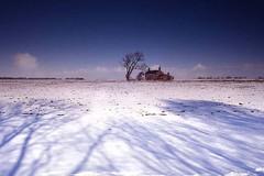 lonely cottage in the snow (~ paddypix ~) Tags: blue winter colour nature buildings countryside moodyblues ukandireland ysplix scenicsnotjustlandscapes damniwishidtakenthat worldglobalaward globalworldawards