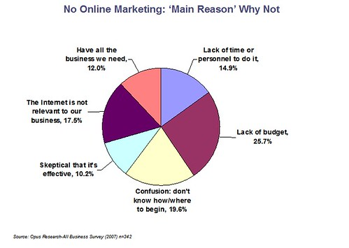 Those who did no online marketing: reasons