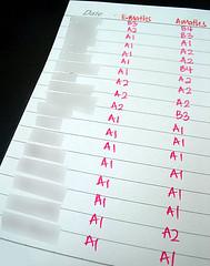 GCE O-Level 2007 Double Maths Grades