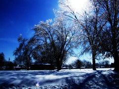 Starting to Thaw (mightyquinninwky) Tags: trees houses winter sun sunlight snow cold ice field rural geotagged frozen 5 kentucky windy sunny bluesky explore shining picnik thaw smalltown febuary freezingrain sleet westernkentucky unioncountykentucky ohiorivervalley winterymix tristatearea icecoated morganfieldkentucky sheetofice geo:lat=37691852 northmorganstreet kyinandil geo:lon=87907287 exploreformyspacestation