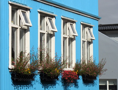 Flowers at the window por helgithor.