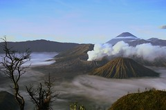 Bromo (Farl) Tags: mountain mountains cold fog clouds sunrise indonesia volcano java smoke caldera volcanoes gunung range jawa bromo semeru active tengger batok eastjava jawatimur bluelist probolinggo
