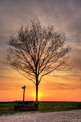Sonnenuntergang (2) (_darklight) Tags: sunset tree sonnenuntergang baum themoulinrouge aichtal