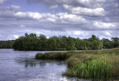 England: Northamptonshire. Spring Sunshine (Tim Blessed) Tags: uk blue trees sky lake nature water clouds reeds countryside scenery wetlands ponds aplusphoto singlerawtonemapped goldstaraward