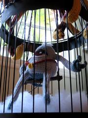 wise-109 (japanland) Tags: fish rabbit bird shirt saw king cage cyclops stuffedanimal wise winner octopus orca killerwhale abracadabra magician matryoshka nestingdolls japanland