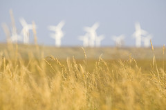 energy wind farm