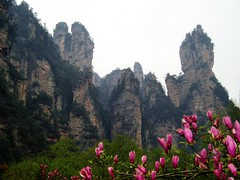 China Travel - Zhangjiajie, Hunan  (Lao Wu Zei) Tags: china travel mountains nature scenery photos unesco   worldheritage   150views allfavouritephotos