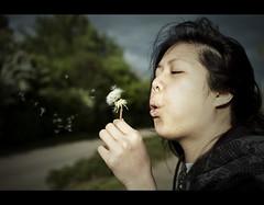 Summer Breeze (edmundlwk) Tags: summer girl canon university wind action f14 blow dandelion coventry breeze warwick sigma30mm 450d rebelxsi edmundlim