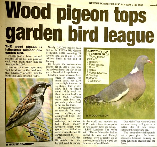 Islington Bird League