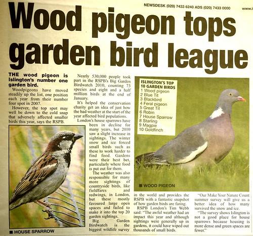 Islington Bird League