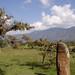 Colombie : Bogota, Villa de Leyva,…