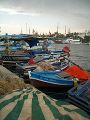 CIMG0903 (mforjan) Tags: boats tunisia sousse kantaoui