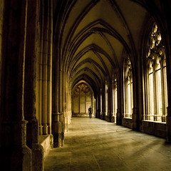 When history gets visible... ((Erik)) Tags: holland dutch bravo utrecht dom nederland thenetherlands cloister domkerk klooster dedom geschiedenis pandhof littlestories magicdonkey fivestarsgallery picswithsoul erikvanhannen